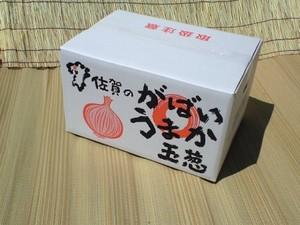 (佐賀県産)玉ねぎ L 以上 10kg