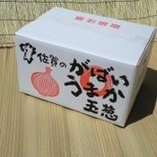 (佐賀県産)玉ねぎ L 以上 20kg